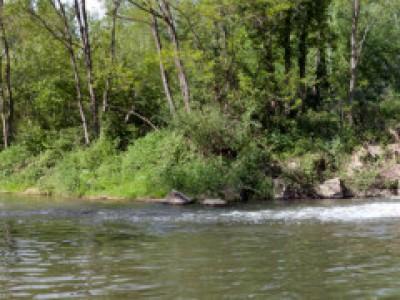 Chalaronne barrage de Tallard