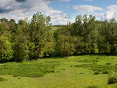 Vallée de la Calonne