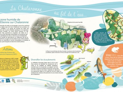 La zone humide de St Etienne sur Chalaronne